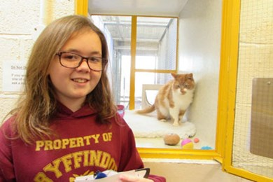 Enterprising schoolgirl gets crafty for the cats