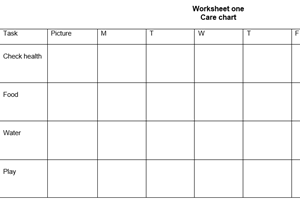 Worksheet one - own care chart