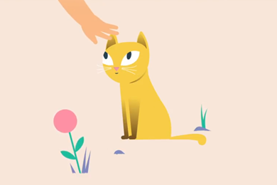 What does my cat's body language mean?
