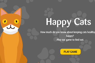 Play the 'Happy cats' game