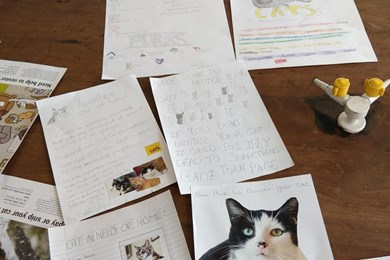 Kids become cat experts with new education talks