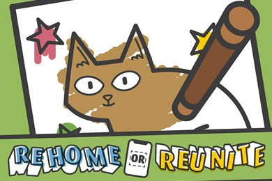 Discover our Rehome or Reunite activity
